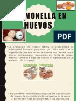 Salmonella en Huevos