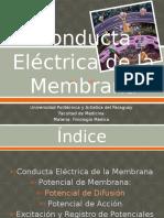 Conducta Eléctrica de La Membrana