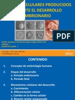 Embriología 1 Clase