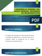 Embriología Labio y Paladar Fisurado Jose Manuel Valdes reyes