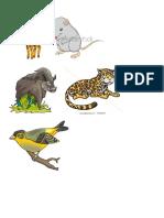 Animales Por J
