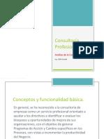 Consultoría Profesional 2Planifiacione Inicio de La Practicacomo Consultor