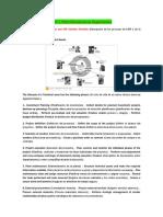 PLM-300 2014 Unit 1 Plant Maintenance Organization Español