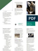 Arqueología Forense Folleto 1