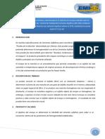 ENSAYO DE LA MANCHA.docx