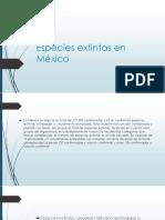 Animales Extintos en México