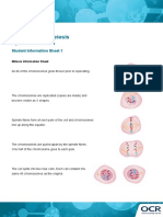 Mitosis and Meiosis Activity