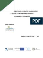 Resumen del Estudio Cuenca Guadalhorce - España