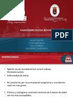paratuberculosis(1)
