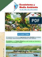 Clase N° 2, ECOSISTEMA y MEDIO AMBIENTE, EIA.pptx