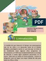 Presentacion TEPSI