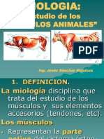 CLASES-DE-MIOLOGIA-ANIMAL[2] (1).ppt
