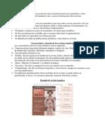 P1 Artículo