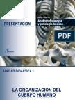 UD1 Anatomofisiología y Patologías Básicas