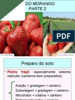 Cultivodomorangoparte2 141103103841 Conversion Gate02
