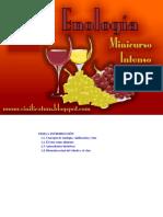 95077575-Minicurso-Intensivo-de-Enologia.pdf