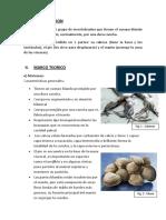 Analisis de Caracteristicas de Moluscos