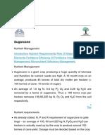 Sugarcane Nutrient Management.html