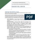 17s. Generalidades Del Shock