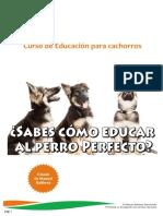 Curso de Educación para Cachorros