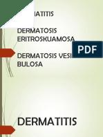 Dermatitis, Eritroskuamosa, Vesikobulosa
