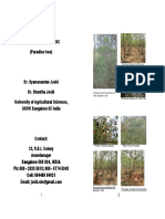 Simarouba brochure, UAS Bangalore, India.pdf