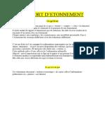 rapport-d-etonnement.docx