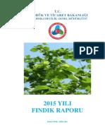 2015 Fındık Raporu