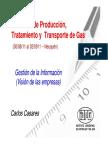 Produccion y Transporte de Gas Natural