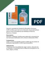 CONCEPTAL-CONCEPTASE.docx