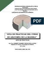 Guía de Prácticas-2009-I.doc