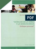 DERECHO DE LA NIÑEZ Y LA ADOLESCENCIA - ENFOQUE PROCESAL. (1).pdf