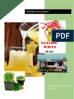 plan_empresa_bebidas.docx