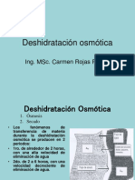 243745473-Deshidratacion-osmotica-13-ppt.ppt