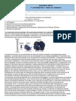 Apuntes Tema 3- Proteínas Características Generales y Estructura Tridimensional