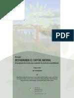 Restoring Natures Capital Es