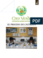 proceso_catacion.pdf