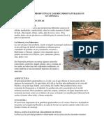 Actividades Productivas y Los Recursos Naturales en Guatemala
