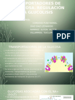 TRANPORTADORE DE GLUCOSA.pptx