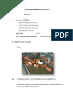 Proyecto de Cuy Reporte Finalisimo Rocio