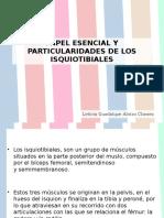 Papel Esencial y Particularidades de Los Isquiotibiales