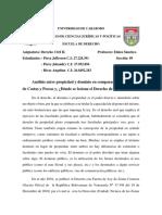 Derecho Civil (Angelina Rivas Alvarez)