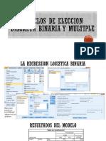 Modelos de Eleccion Discreta Binaria y Multiple