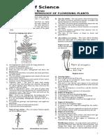 Copy of Morphology of Flowering Plants