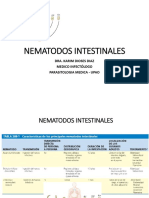 NEMATODOS INTESTINALES