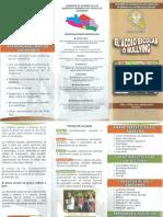 TRIPTICO BULLYNG.pdf