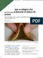 Un Sensor Que Se Adapta a Los Dedos Para Detectar El Cáncer de Mama _ Ciencia _ EL PAÍS