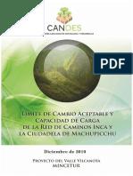 Límite de Cambio Aceptable Capacidad de Carga MAPI - Informe Final 05-05-11.doc