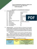 002-PLAN DENGUE (1).docx