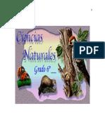cursodecienciasnaturalesgradosexto-lacelula-130929172201-phpapp02.doc
